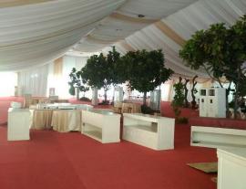 Dekorasi Tenda Roder